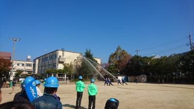 fire-DSC_5781.jpg
